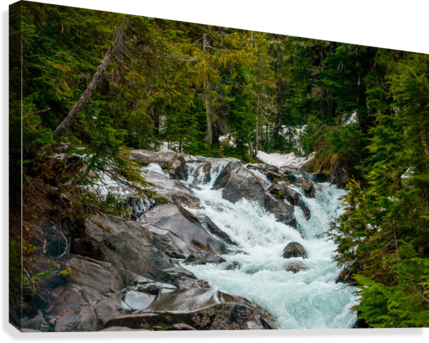 Wild Water in the Mountains  Canvas Print