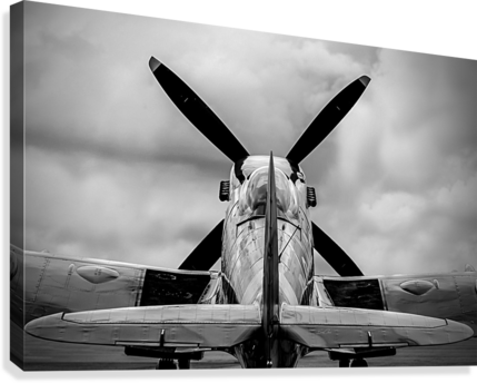 Spitfire Backside Limited Edition 50 Prints only  Canvas Print