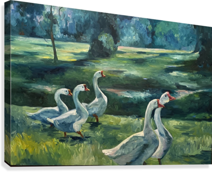 Geese at St. Francisville  Canvas Print