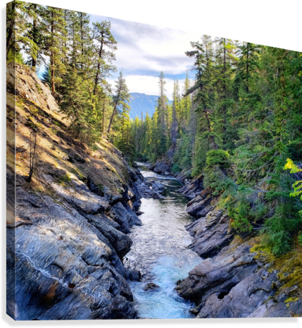 Icicle Gorge Trail  Canvas Print