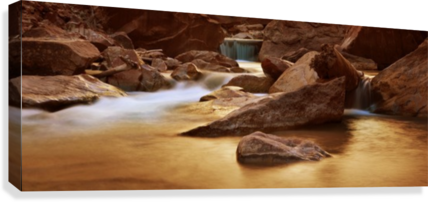 Zion Park River  Canvas Print