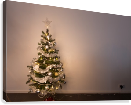 book 600 Danial Daoud Small%20Christmas%20tree%20standing%20in%20front%20of%20white%20wallpaper%20plugged%20in%20and%20shining%20warm