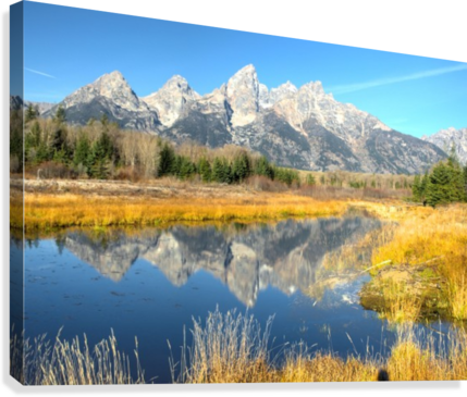 Beavers View of Tetons  Canvas Print