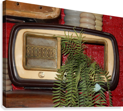 Old Radio Used For Succulent Display  Canvas Print