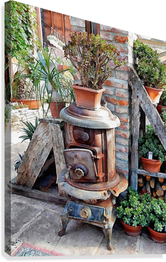 Old Wood Stove With Succulents  Canvas Print