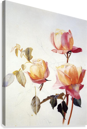FLORENTINE ROSES HENRY RODERICK NEWMAN  Canvas Print