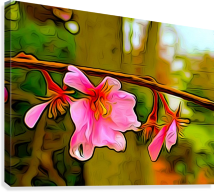 BLOSSOM ON A LIMB IMPRESSION OF THINGS  Canvas Print