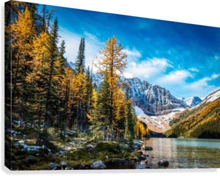 Taylor Lake, Alberta  Canvas Print