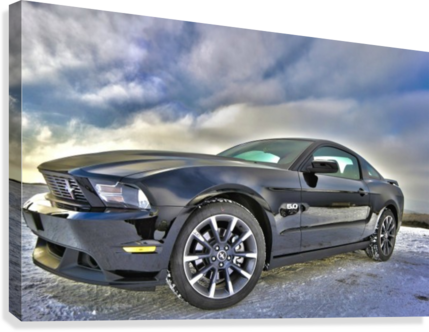 ford mustang   Canvas Print