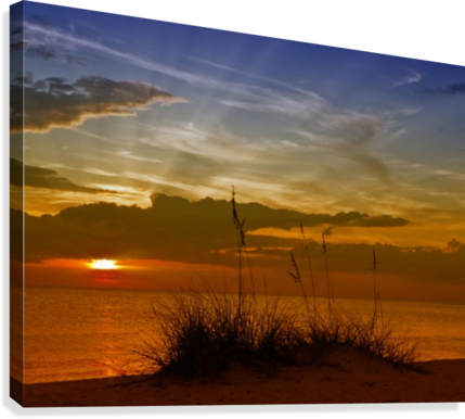 Gorgeous Sunset  Canvas Print