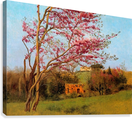 BLOSSOM TREE_OSG ONE SIMPLE GALLERY  Canvas Print