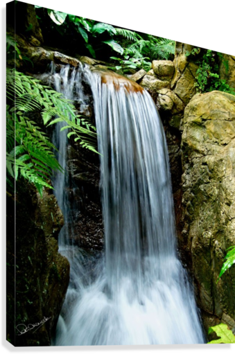 LITTLE HONG KONG PARK WATERFALL SHADOW AND FORM  Canvas Print
