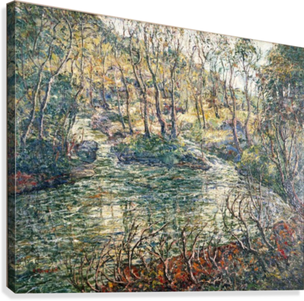 River and trees  Canvas Print