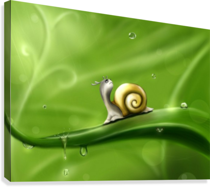 SNAIL STOCKPHOTOGRAPHY  Canvas Print