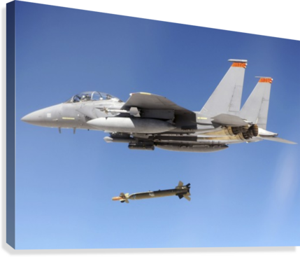 An F-15E Strike Eagle drops a GBU-28 bomb during a Combat Hammer mission.  Canvas Print
