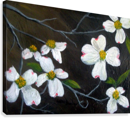 DOGWOODS TAMI BOOHER APPALACHIAN NATURE PAINTER  Canvas Print