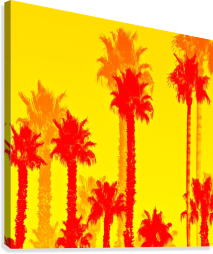 orange palm tree pattern abstract with yellow background timmyla