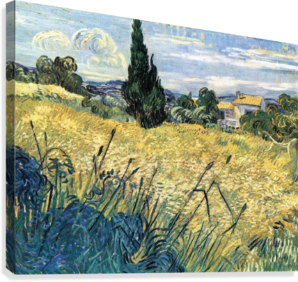 Green wheat field with cypress by Van Gogh  Canvas Print