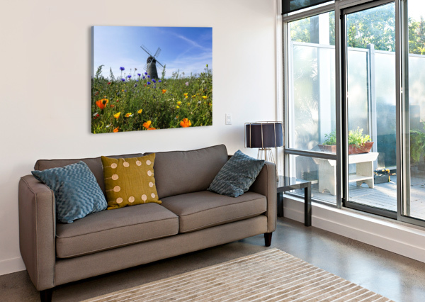 A WINDMILL AGAINST A BLUE SKY AND CLOUD WITH A FIELD OF WILDFLOWERS IN THE FOREGROUND; WHITBURN, TYNE AND WEAR, ENGLAND PACIFICSTOCK  Canvas Print