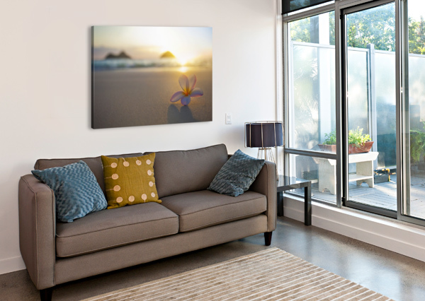 A PINK PLUMERIA FLOWER SITS ON THE SAND OF LANIKAI BEACH IN KAILUA WITH A VIEW OF MOKULUA TWIN ISLANDS AND THE OCEAN AT SUNSET IN THE DISTANCE; KAILUA, OAHU, HAWAII, UNITED STATES OF AMERICA PACIFICSTOCK  Canvas Print