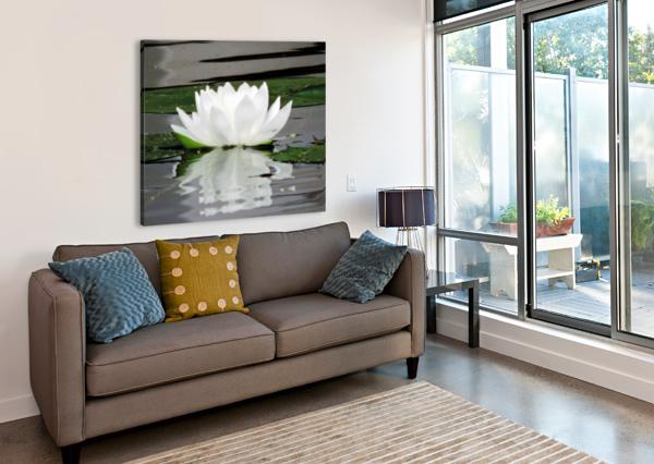 FLOWERINGLILYPAD CHERYL BARKER  Canvas Print