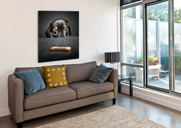 PUPPY LONGING FOR A TREAT JOHAN SWANEPOEL  Canvas Print