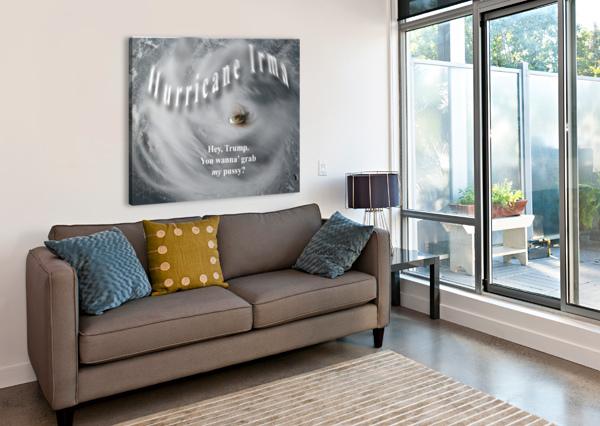HURRICANEIRMA CHERYL BARKER  Impression sur toile