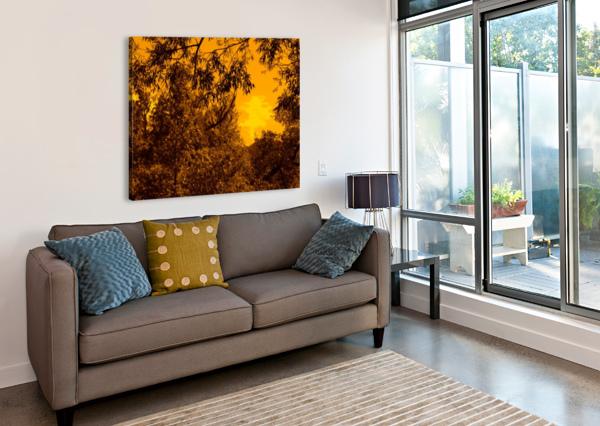SOFN-8D23D86C JESSE SCHILLING  Canvas Print