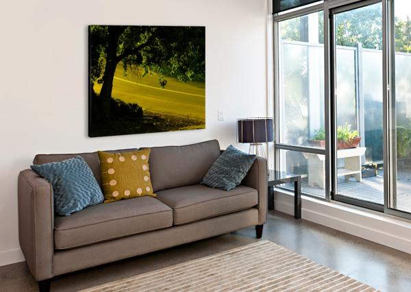 SOFN-2B15499B JESSE SCHILLING  Canvas Print