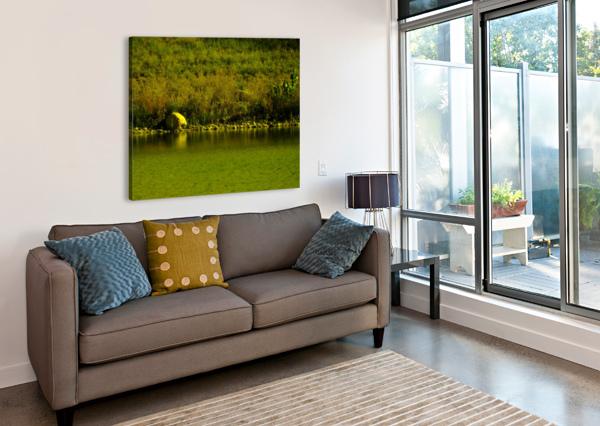 SOFN-23FF155D JESSE SCHILLING  Canvas Print