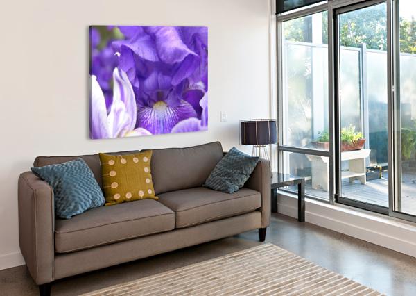 BLUE IRIS PHOTOGRAPH KATHERINE LINDSEY PHOTOGRAPHY  Canvas Print