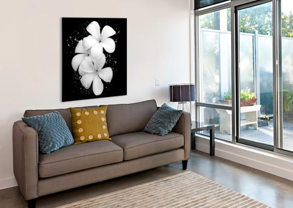 WHITE PETUNIAS  ARLETTE TEBELE ART  Canvas Print