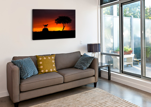 LOOKING FOR SOMETHING 1X  Canvas Print