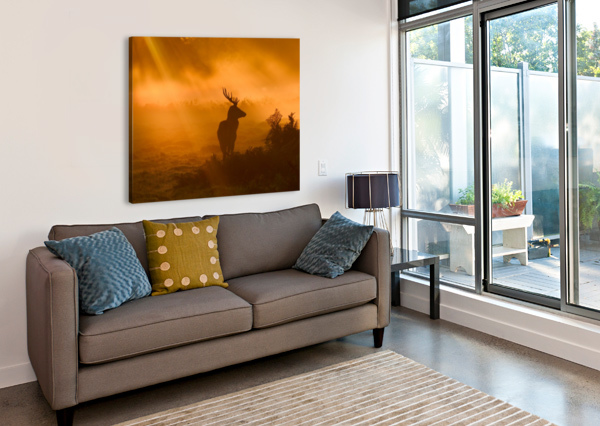 GUARD OF LIGHT 1X  Canvas Print
