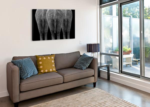 THE ELEPHANTS 1X  Canvas Print