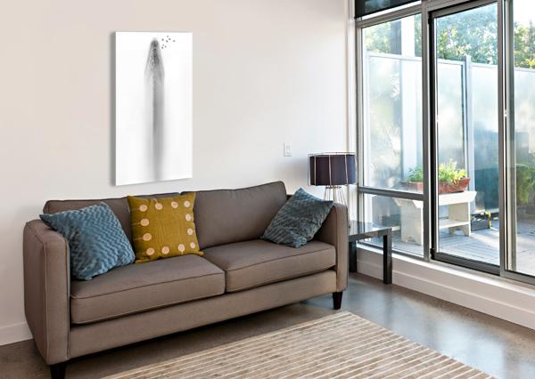 WHITE 1X  Canvas Print