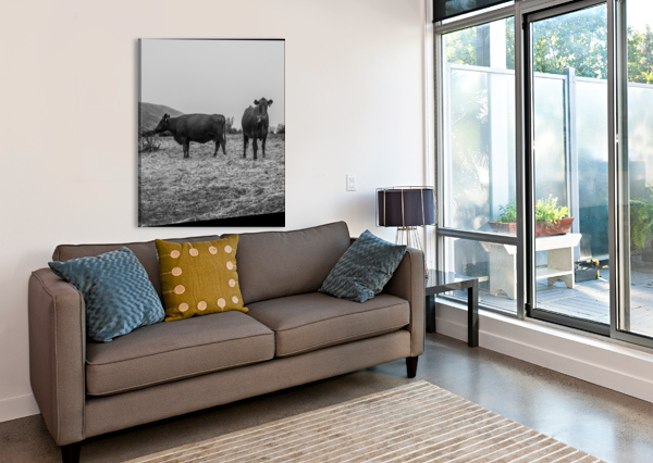 COWS IN THE MIST CHRIS CRAMER  Canvas Print