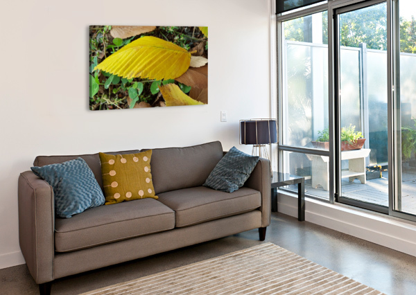 AUTUMN LEAVES A LONDON COLLECTION  Canvas Print