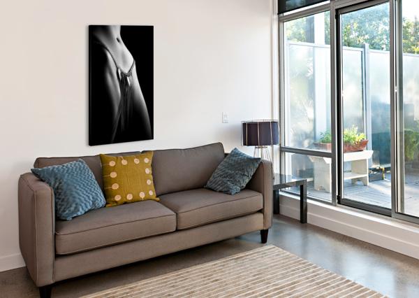 WOMAN CLOSE-UP CHAIN PANTY JOHAN SWANEPOEL  Canvas Print
