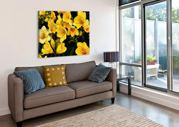 YELLOW FREESIAS DOROTHY BERRY-LOUND  Canvas Print