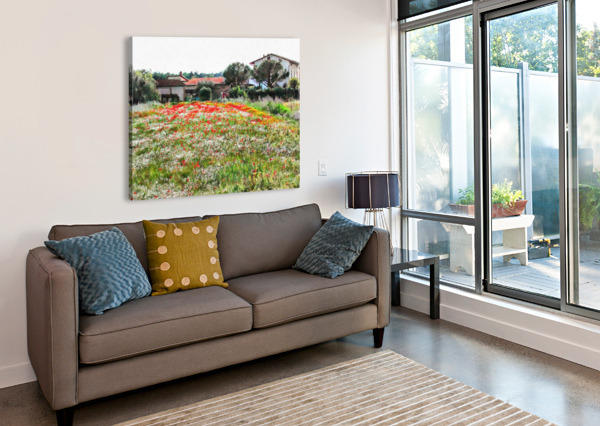 OLD FARM HOUSE WITH POPPIES DOROTHY BERRY-LOUND  Canvas Print