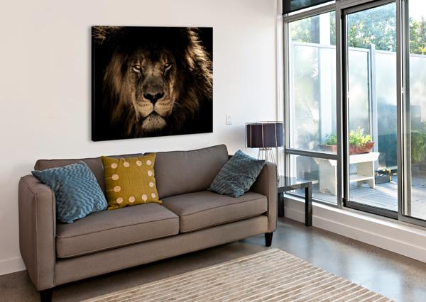 AFRICAN LION WILDCAT MANE CLOSEUP SHAMUDY  Canvas Print