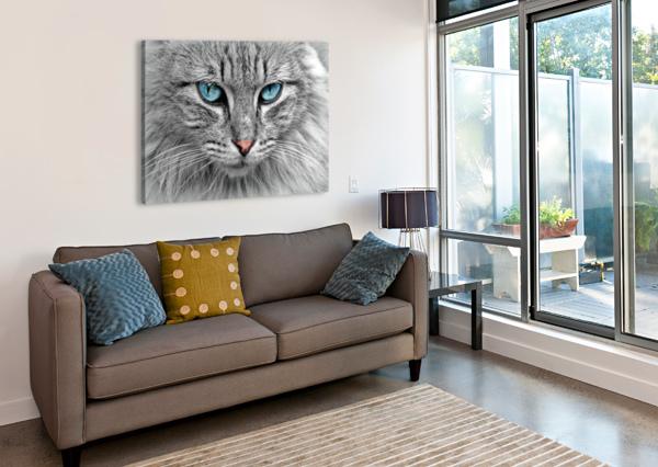 CAT ANIMAL CAT PORTRAIT MACKEREL SHAMUDY  Canvas Print