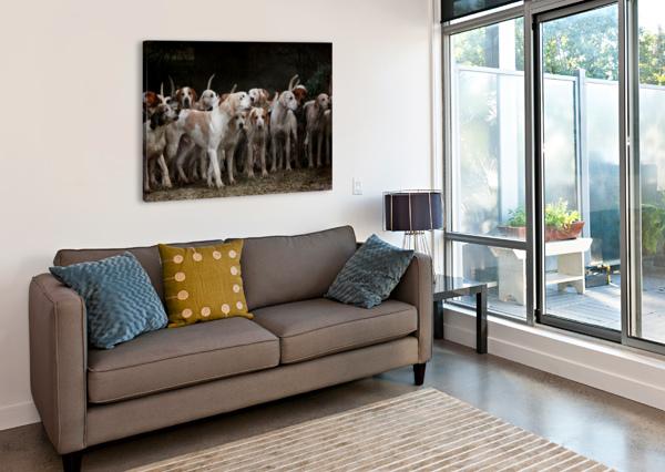 DOG HERD CANINE ANIMAL PET HOUNDS SHAMUDY  Canvas Print