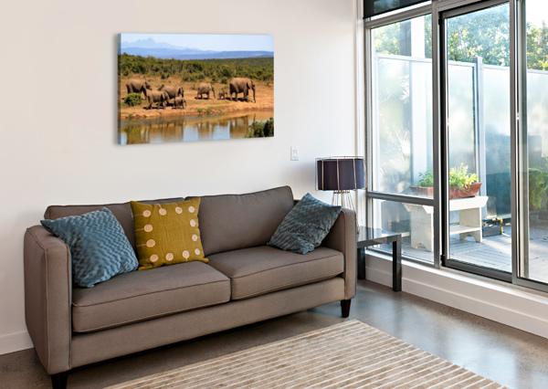 ELEPHANT HERD OF ELEPHANTS SHAMUDY  Canvas Print