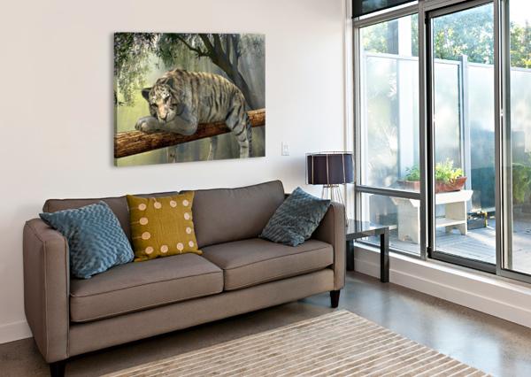 TIGER ANIMAL JUNGLE RAINFOREST SHAMUDY  Canvas Print
