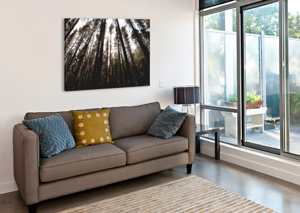 20190802_182121 AFTER THE SHUTTER PHOTOGRAPHY  Canvas Print