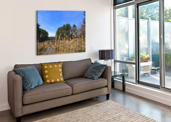 SIMSBURY WETLAND BRIAN CAMILLERI PHOTOGRAPHY  Canvas Print