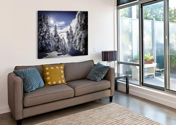 KOOTENAY ALPINE SNOW BILLY STEVENS MEDIA   Canvas Print