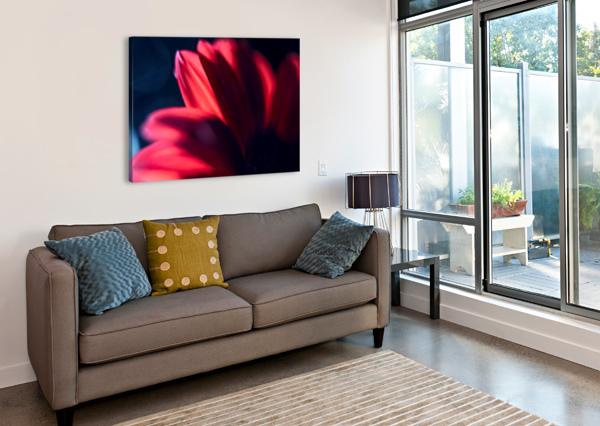 RED 1 DANIEL THIBAULT ARTISTE-PHOTOGRAPHE  Canvas Print